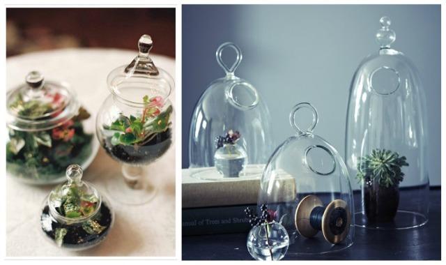Glass terrainium table centres