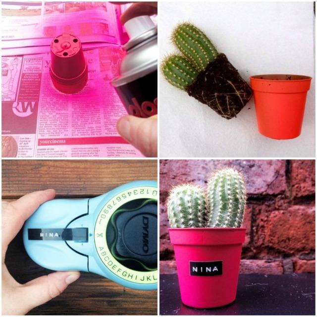 neon pink plant pot